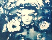 Half-term Workshop for 11-18 year olds - Cyanotype Portraits @ The Gardener's Lodge