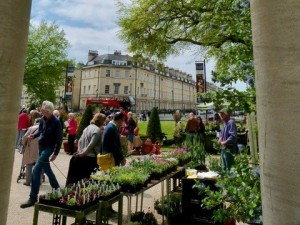 Plant Sale @ The Holburne Museum