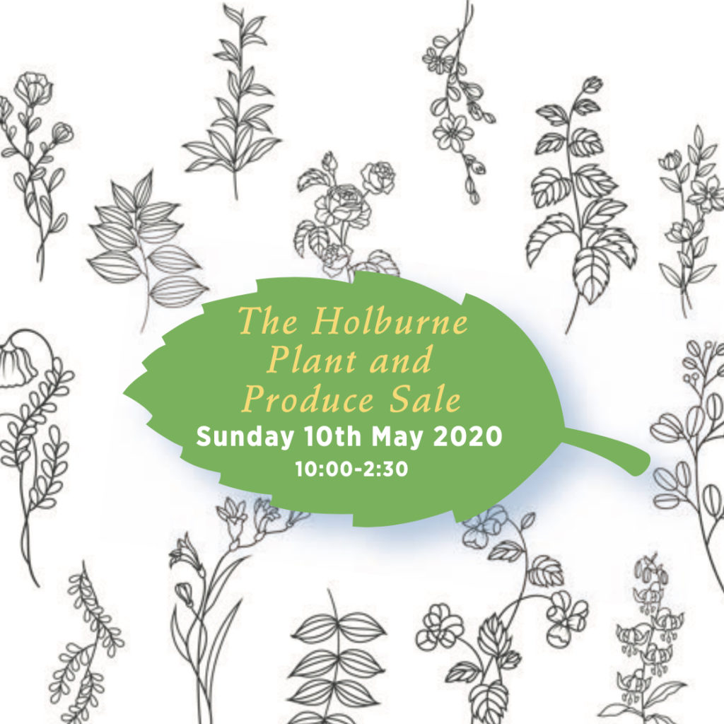 Holburne Friends Plant sale