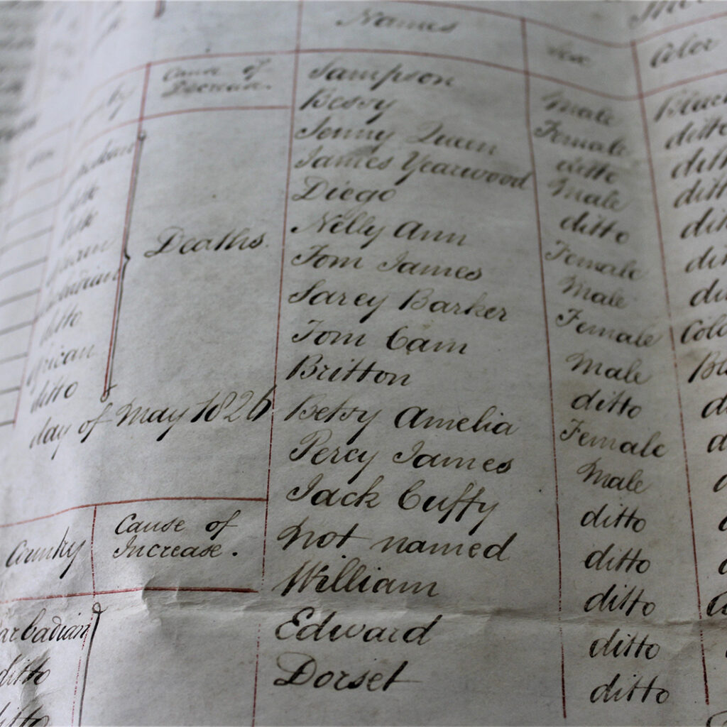 Original Deed of Mortgage and schedule of Ball Plantation